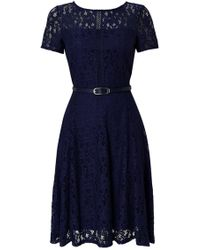 Wallis - Navy Lace Belted Fit And Flare Dress - Lyst