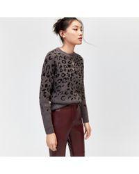 Warehouse - Cosy Leopard Print Jumper - Lyst