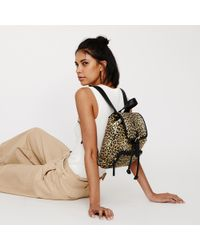 Warehouse - Leopard Print Small Backpack - Lyst