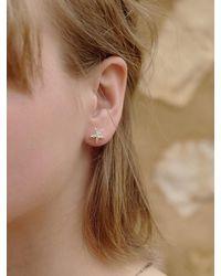 FLOWOOM Starfish Earrings - White