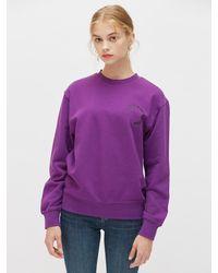 Plac Circle Graphic Printed Sweatshirt - Purple