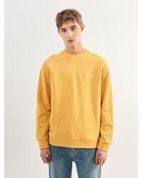 Plac Colour Sweatshirt - Yellow