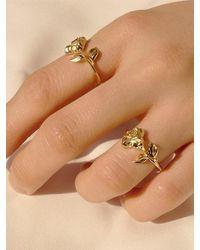 FLOWOOM Rose Ring - Multicolour