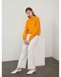 among A Am Sweatshirt - Orange
