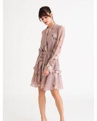 Petite Studio Lorreta Dress Blush Floral - Pink