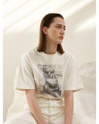 AEER Parisienne Puppy Leo T-shirt - Grey
