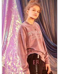 W Concept - Embroidered Busy Babe Velvet Sweatshirt - Purple - Lyst