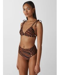 Whistles Zebra Print Bikini Top - Brown