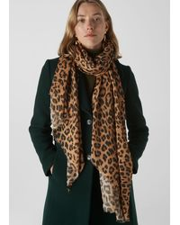 Whistles Lily And Lionel Leopard Scarf - Brown
