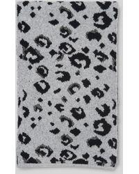 Whistles Leopard Intarsia Knit Scarf - Grey