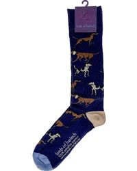 lords of harlech Donald Hound Dogs Navy Extrafine Merino Wool Socks - Blue