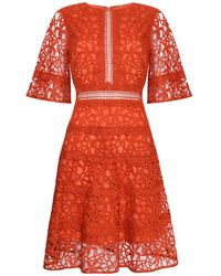 True Decadence Orange Lace Cut Work Midi Dress