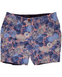 lords of harlech John Lux Mums Floral Peach - Blue