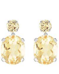 Augustine Jewels Citrine Drop Earrings - Metallic