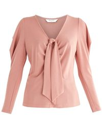 Paisie Front Tie Blouse In Pink
