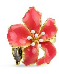 Bellus Domina Enamel Orchid Ring - Multicolour