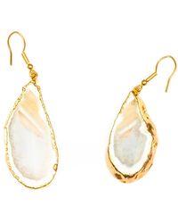 Tiana Jewel Elyssia Agate Gemstone Earrings Natural - Multicolor
