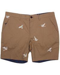 lords of harlech Edward Origami Birds Khaki - Brown