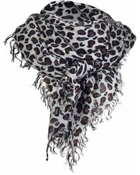 Asneh Kitty Large Leopard Print Cashmere Scarf In Grey - Gray