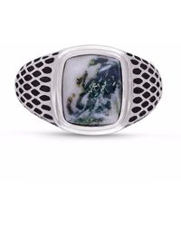 LMJ Tree Agate Stone Ring - Multicolour