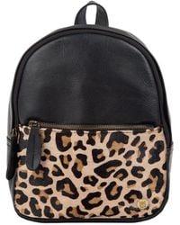 MAHI Mini Backpack In Ebony Black Leather With Leopard Print Pony Hair Front Pocket