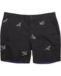 lords of harlech Edward Origami Birds Black