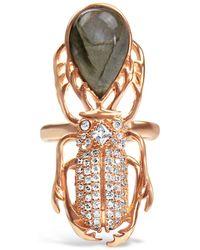 Bellus Domina Gold-plated Silver Labradorite Beetle Ring - Metallic