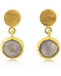 Auree Salina Gold Vermeil & Labradorite Gemstone Drop Earrings - Metallic