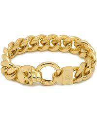 Northskull Atticus Skull Curb Chain Bracelet In Gold - Metallic