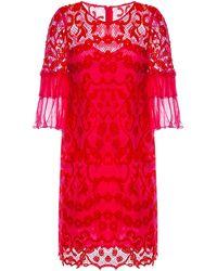 Nissa Ruffled Sleeve Lace Dress - Red
