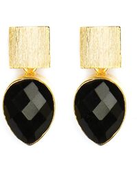 Magpie Rose Black Onyx Teardrop Earrings