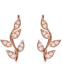 LÁTELITA London Diamond Leaf Ear Climber Rosegold - Multicolour