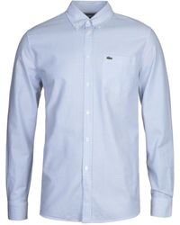 Lacoste Blue Striped Oxford Shirt
