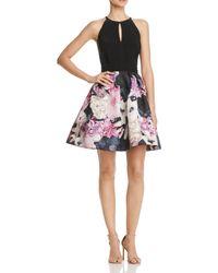 Aqua Fit & Flare Party Dress - Black