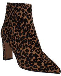 Steven New York Jenn Dress Booties - Brown
