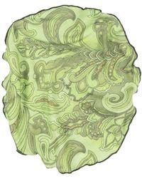 Fefe Sciarpa - Verde