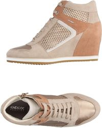 Geox - High-tops & Trainers - Lyst