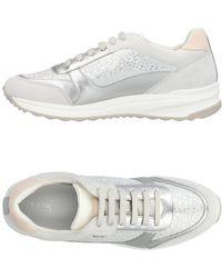 Geox Low Sneakers & Tennisschuhe - Grau