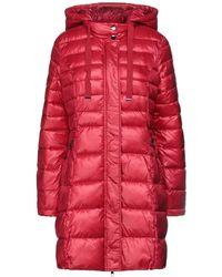 GAUDI Down Jacket - Red