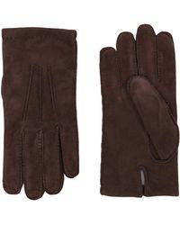 Eleventy Gloves - Brown