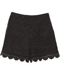 Vivetta Pantalones cortos y bermudas - Negro