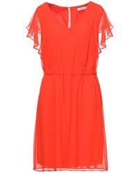 Naf Naf Midi Dress - Red