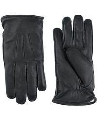 Bolongaro Trevor Gloves - Black