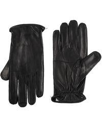 Dolce & Gabbana Gloves - Black