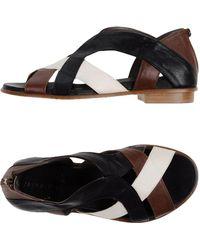 Malloni Sandals - Black