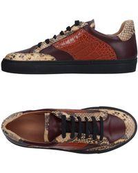 Dries Van Noten Low-tops & Sneakers - Brown