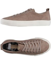 Pointer - Low-tops & Sneakers - Lyst