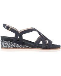 Franca Sandals - Blue