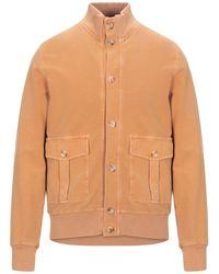 Circolo 1901 Sweatshirt - Orange