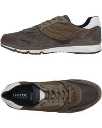 Geox Low-tops & Trainers - Brown